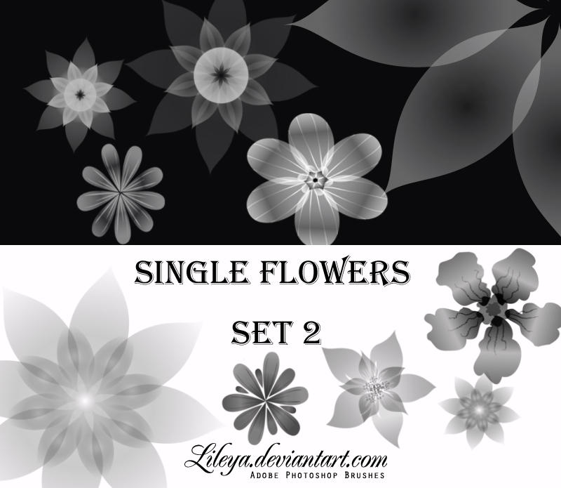 Single Flowers -set 2- by Lileya