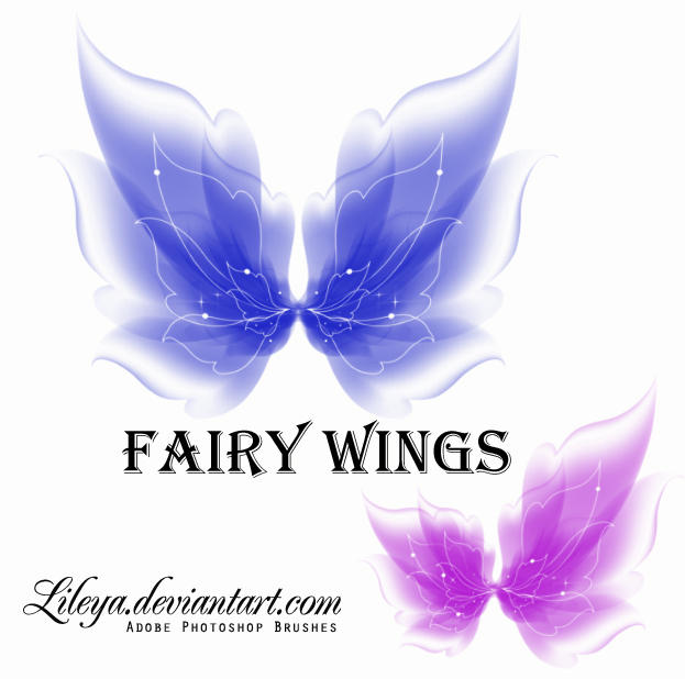 http://fc08.deviantart.net/fs71/i/2010/313/e/9/fairy_wings_by_lileya-d32i3wa.jpg