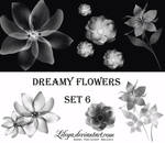 Dreamy Flowers set 6