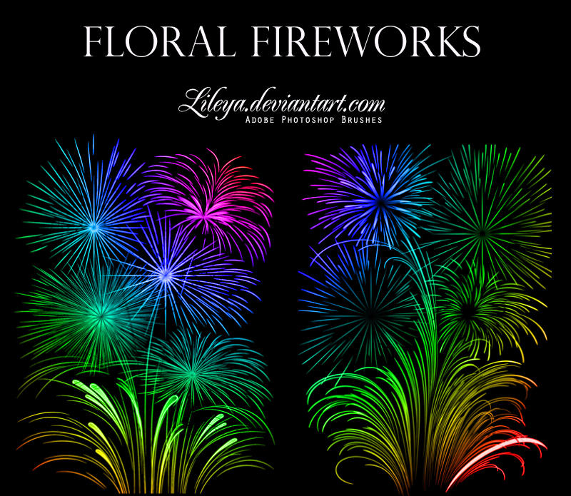 Floral Fireworks by Lileya