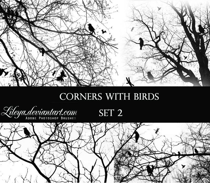 Corners with Birds - set 2 by Lileya
