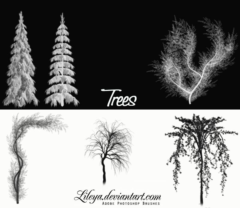 Trees - PS CS brush