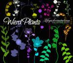 Wierd Plants