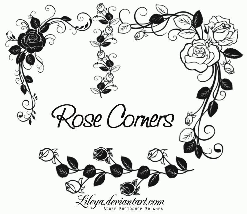 http://fc01.deviantart.net/fs70/i/2011/187/c/7/rose_corners_by_lileya-d3l79ik.jpg