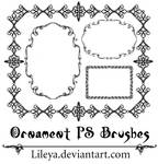 ..:Ornament Frames:..