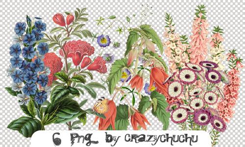 crazychuchu PNG 6 by crazychuchu