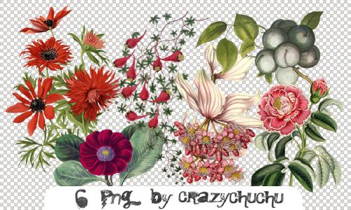 crazychuchu PNG 9 by crazychuchu
