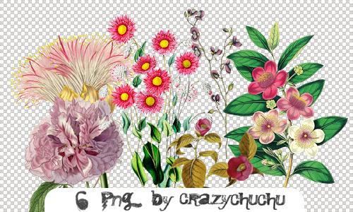crazychuchu PNG 11 by crazychuchu