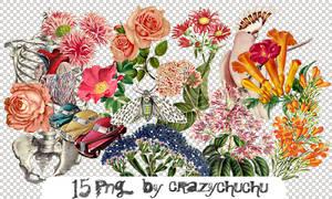 crazychuchu PNG 38