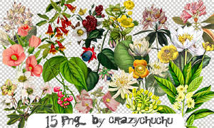 crazychuchu PNG 45