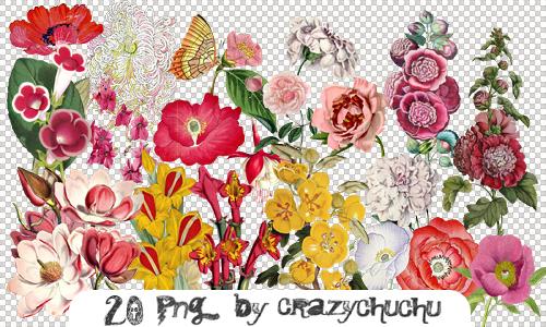 crazychuchu PNG 49 by crazychuchu