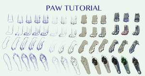 Canine Paw Tutorial