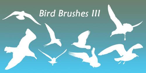 Bird Brushes III