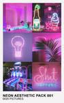 Neon Aesthetic Pack 001 by Mermaid Awkward