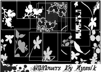 Brushes: Wildflowers_icons by ayumik