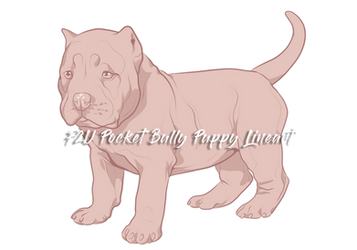 F2U Pocket Bully Puppy Lineart
