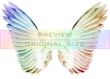 Wings Png by janasbangel