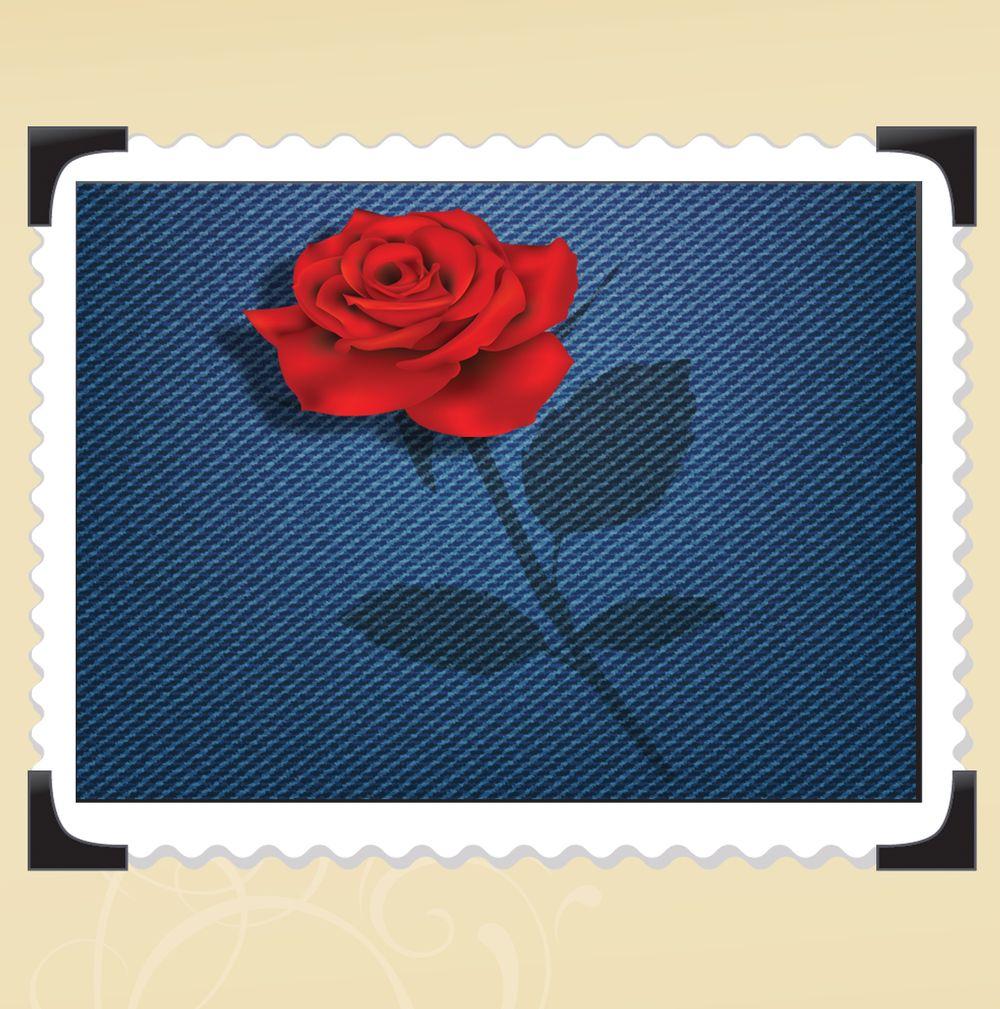 Rose Red Frame PSD