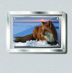 Glass Metal Frame PSD