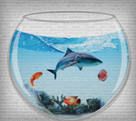 Aquarium Shark PSD