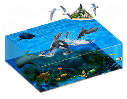 Marine Life Cut PSD