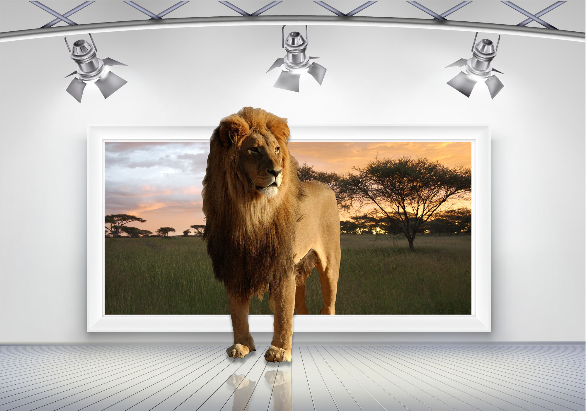 Lion Out of bounds 3 Frame Room PSD by wsaconato on DeviantArt