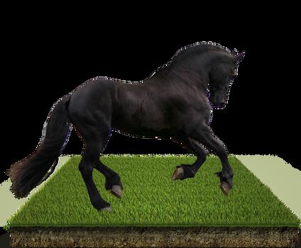 Grass Patch Horse PSD