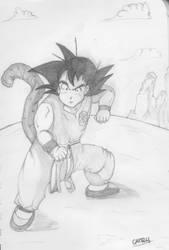 Goku140313 by mcapelli