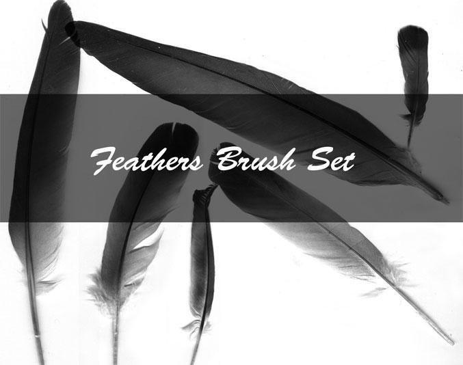 Feather Brush Set by Kittyd-Stock