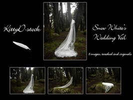 Snow White's Wedding Veil I by Kittyd-Stock