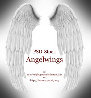 Angelwings - PSD Stock