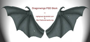 Dragon Wings PSD STock