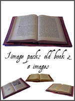 Old Book 2 by nightgraue