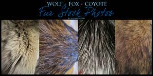 Fur Stock