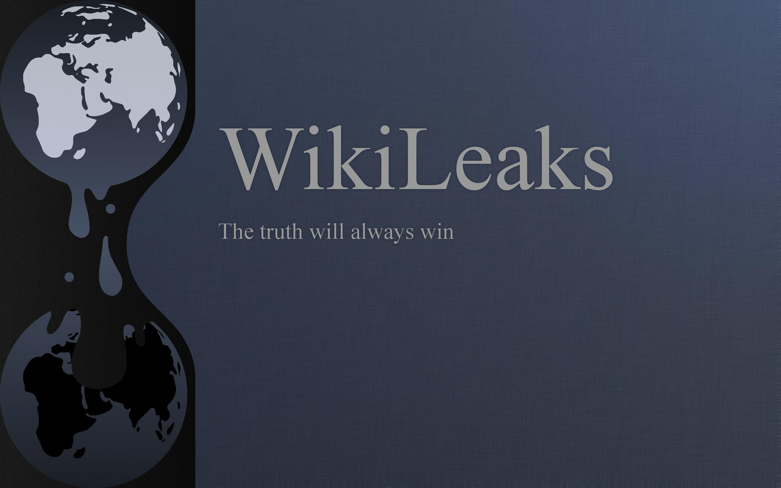 WikiLeaks by knozos