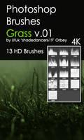 Shades Grass v.01 HD Photoshop Brushes
