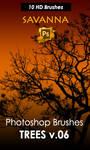 Savanna Trees Photoshop Brushes