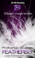 Shades Feathers 01 Photoshop Brushes