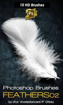 Shades Feathers 02 Photoshop Brushes