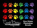 Paw Prints Photoshop Brushes