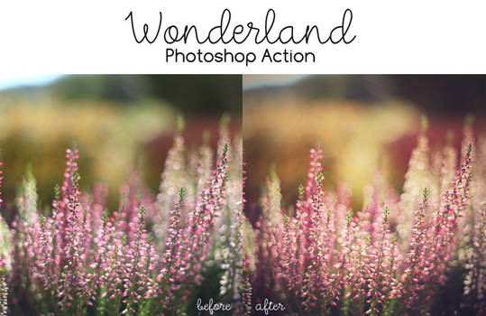 Photoshop Action: Wonderland