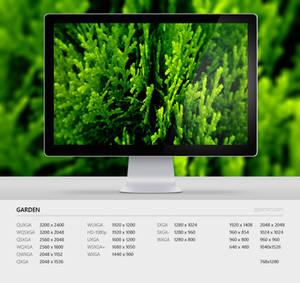 Wallpaper 84 Garden