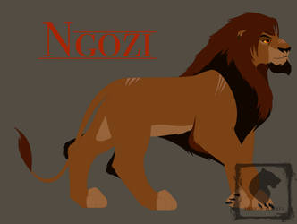 Ngozi by design-always