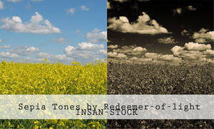 Sepia Tones by Insan-Stock