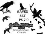 Raven Set 7.0 by Insan-Stock