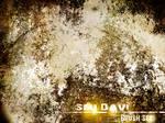 Seu Davi Grunge-Rust Brush