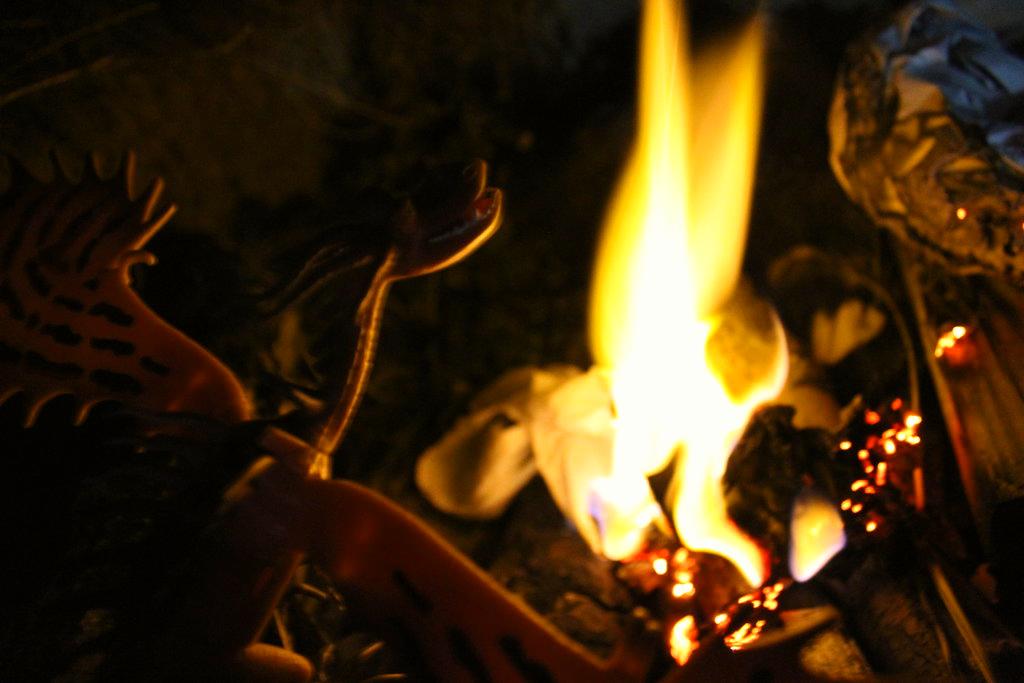 Dragon of Fire by GwillaTheDragon
