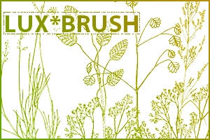 Herbology Class I - Brushes by luxbella