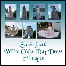 Stock Pack - Olden Day Dress