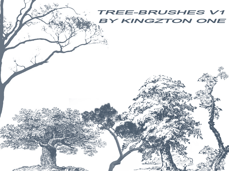 Tree-Brushes V.1